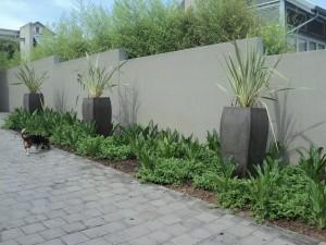 Sbahlescapes-landscape-pot-plant